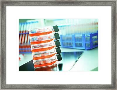 Glass Bottles Containing Orange Liquid Framed Print by Wladimir Bulgar