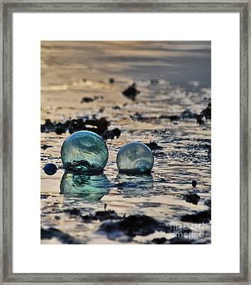 Glass Float At Sunset Framed Print by Cynthia Lagoudakis