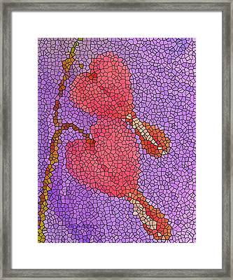 Glass Hearts Framed Print by Chris Berry