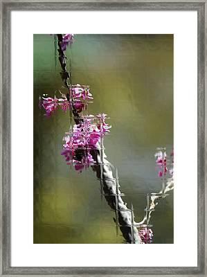 Glass Framed Print by Joe Bledsoe