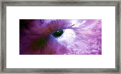 Phoenix Framed Print by Amar Sheow