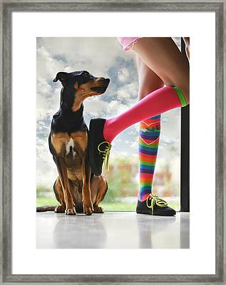 Glass Menagerie Framed Print by Laura Fasulo