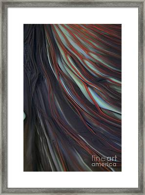 Glass Veins Framed Print