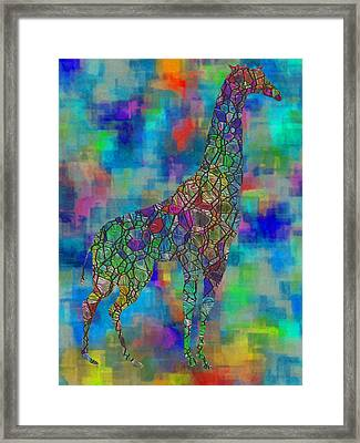 Glassed Giraffe Framed Print by Jack Zulli