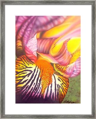 Glavis Iris Framed Print
