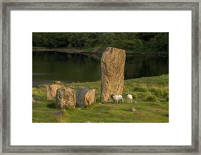 Glengarriff, Ireland, Uragh Stone Circle Framed Print by Tom Norring