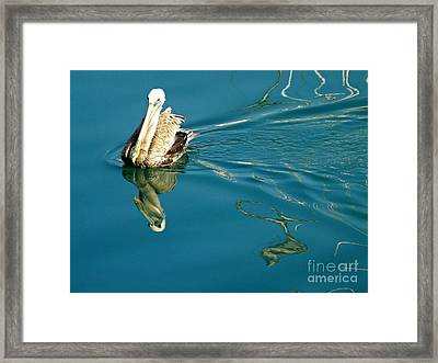 Framed Print featuring the photograph Gliding by Clare Bevan
