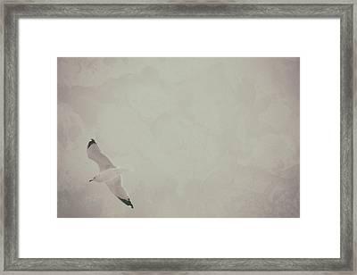 Gliding Thru Life Framed Print by Karol Livote
