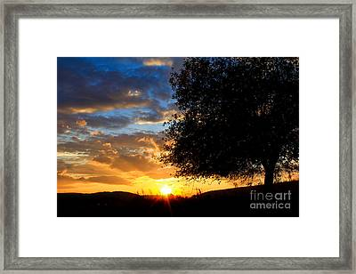 Glimmer Of Hope Framed Print by Everett Houser