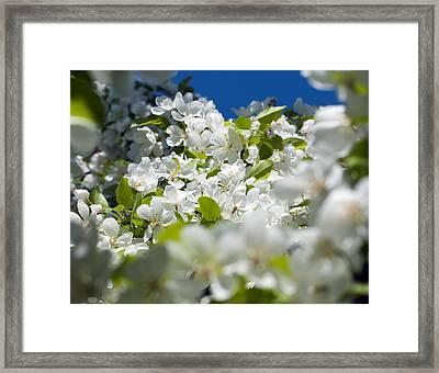 Glimpse Of Heaven Framed Print by Randolph Fritz