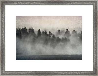 Glimpse Of Mist And Trees Framed Print by Carol Leigh