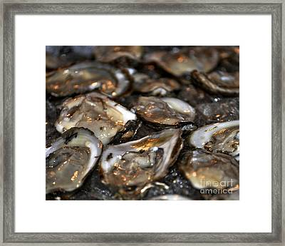 Glistening Oysters Framed Print