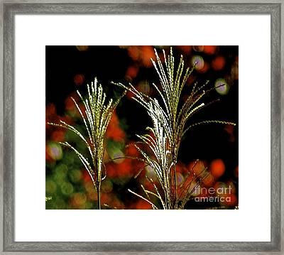 Glister Framed Print