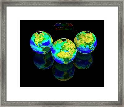 Global Chlorophyll Distribution Framed Print by Carlos Clarivan
