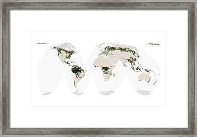Global Forest Cover Framed Print