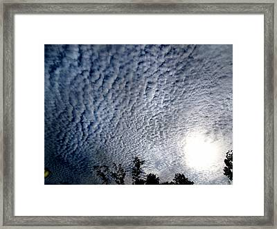 Global Warming  Framed Print by Tammy Cantrell