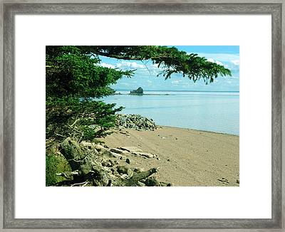 Glooscap Trail At Five Islands Framed Print by Janet Ashworth