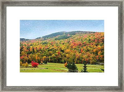 Glorious 2 Framed Print by Betty LaRue