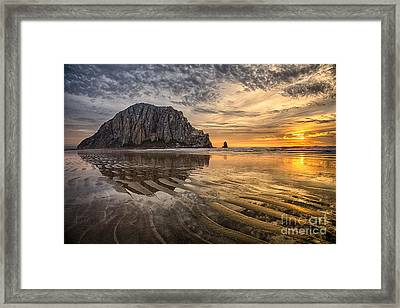 Glorious Framed Print by Alice Cahill