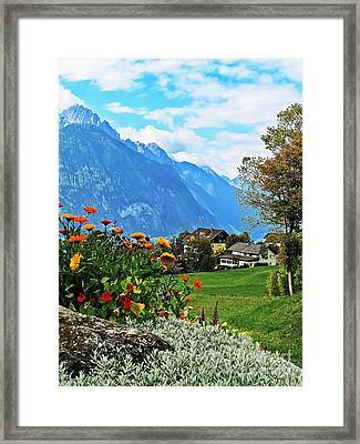 Glorious Alpine Meadow Framed Print