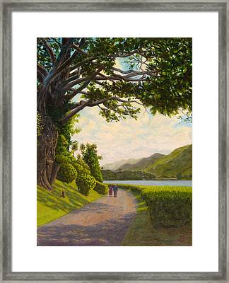 Glorious Galway Framed Print