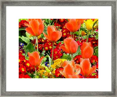Glorious Garden Framed Print by Bruce Nutting