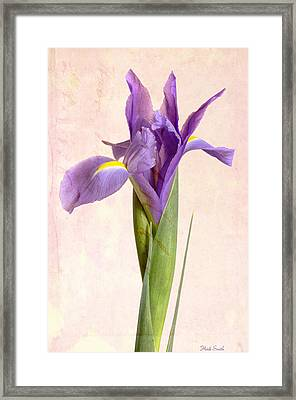 Glorious Framed Print by Heidi Smith