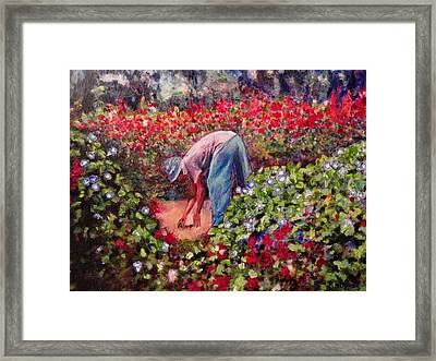 Glorious Morning Framed Print by Michael Durst