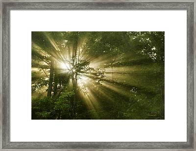 Glorious Morning Sunrise Framed Print by Christina Rollo