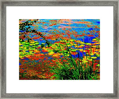 Glorious Water Lilies Banks Of The Lachine Canal Montreal Summer  Scenes Art Carole Spandau Framed Print