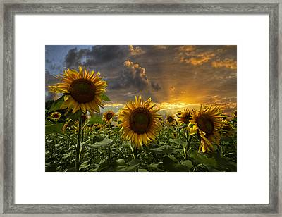 Glory Framed Print by Debra and Dave Vanderlaan