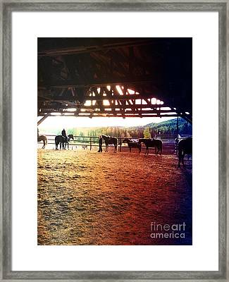 Framed Print featuring the photograph Glory In Horses by J Ferwerda