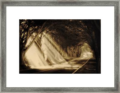 Glory Rays Framed Print by Priscilla Burgers