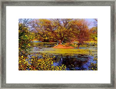 Glossy Nature Framed Print by Deepti Chahar