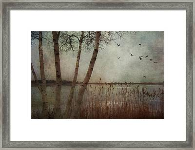 Gloucester Morning Framed Print by Joann Vitali