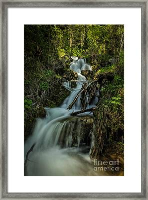 Glow At The Top Framed Print by Mitch Johanson
