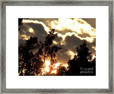 Glow Framed Print by Brian  Commerford