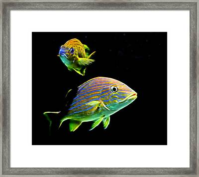 Glow Fish Framed Print