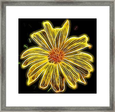 Glow In The Dark Framed Print by Judy Vincent