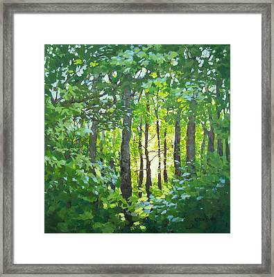 Framed Print featuring the painting Glow by Karen Ilari