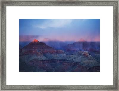 Glow Tops Framed Print by Peter Coskun