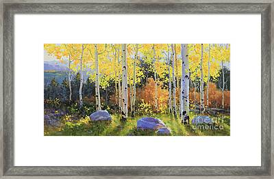 Glowing Aspen  Framed Print by Gary Kim