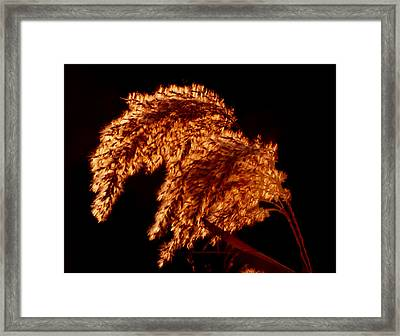 Framed Print featuring the digital art Glowing Embers by R Thomas Brass