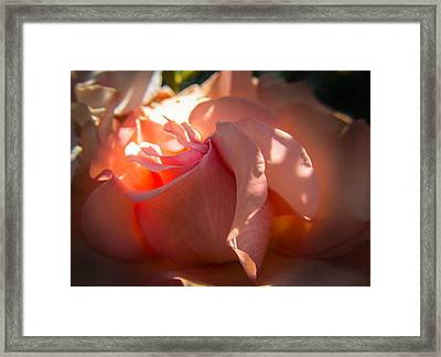 Framed Print featuring the photograph Glowing Heart by Patricia Babbitt