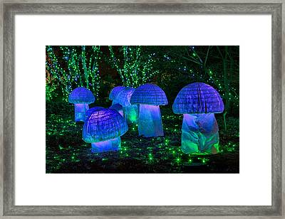 Glowing Mushrooms Framed Print by Cindy Archbell