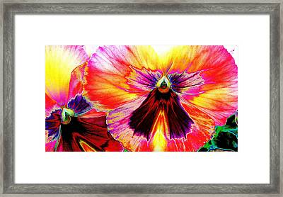Framed Print featuring the digital art Glowing Pansey by Suzanne Silvir