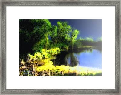 Glowing Pond On A Foggy Night Framed Print by Ann Almquist