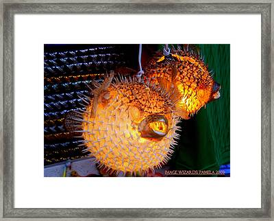Glowing Pufferfish Framed Print by ARTography by Pamela Smale Williams