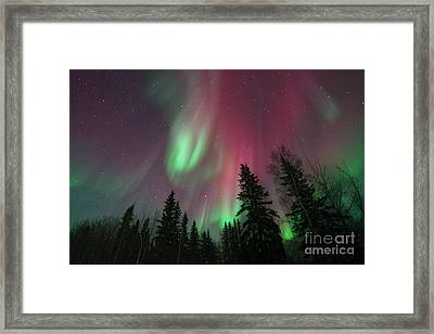 Glowing Skies Framed Print by Priska Wettstein