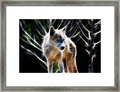 Glowing Wolf Framed Print by Shane Bechler
